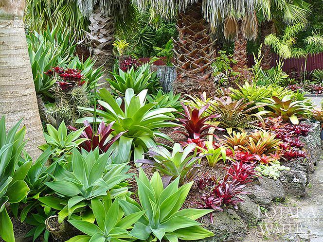 Oasis Private Estates Pompano Beach Florida