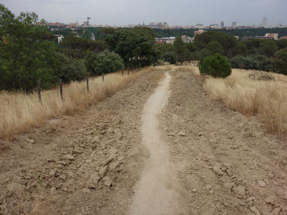 destrozos y terreno arado en casa de campo