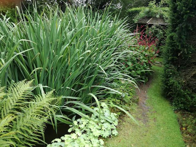 Bog Garden, ogród bagienny