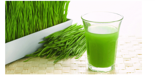 3 Good Reasons Why You Should Start Drinking Wheatgrass Juice