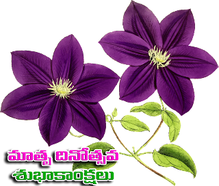 Telugu Mothers day WhatsApp Stickers Transparent PNG Images