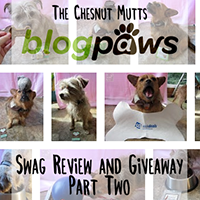 Blogpaws swag review and giveaway part two