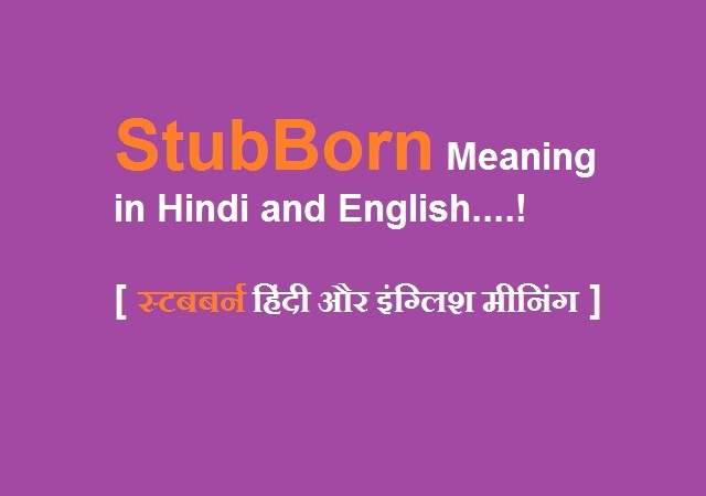 Stubborn Meaning in Hindi and English