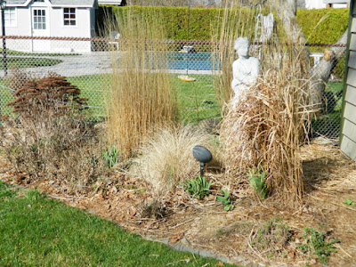 Etobicoke Toronto spring garden clean up before by Paul Jung Gardening Services Inc
