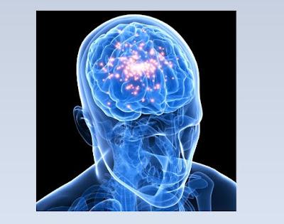 ¿Qué es la serotonina?