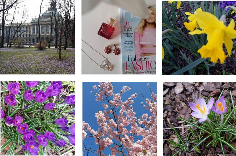 Frühlingsbilder auf Instagram gepostet