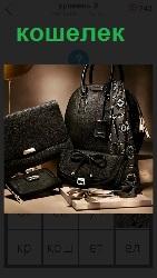 несколько сумок и кошелек