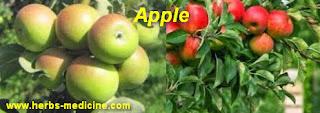 Asthma treatment use Apple