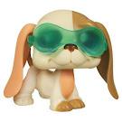 Littlest Pet Shop Singles Basset Hound (#2096) Pet