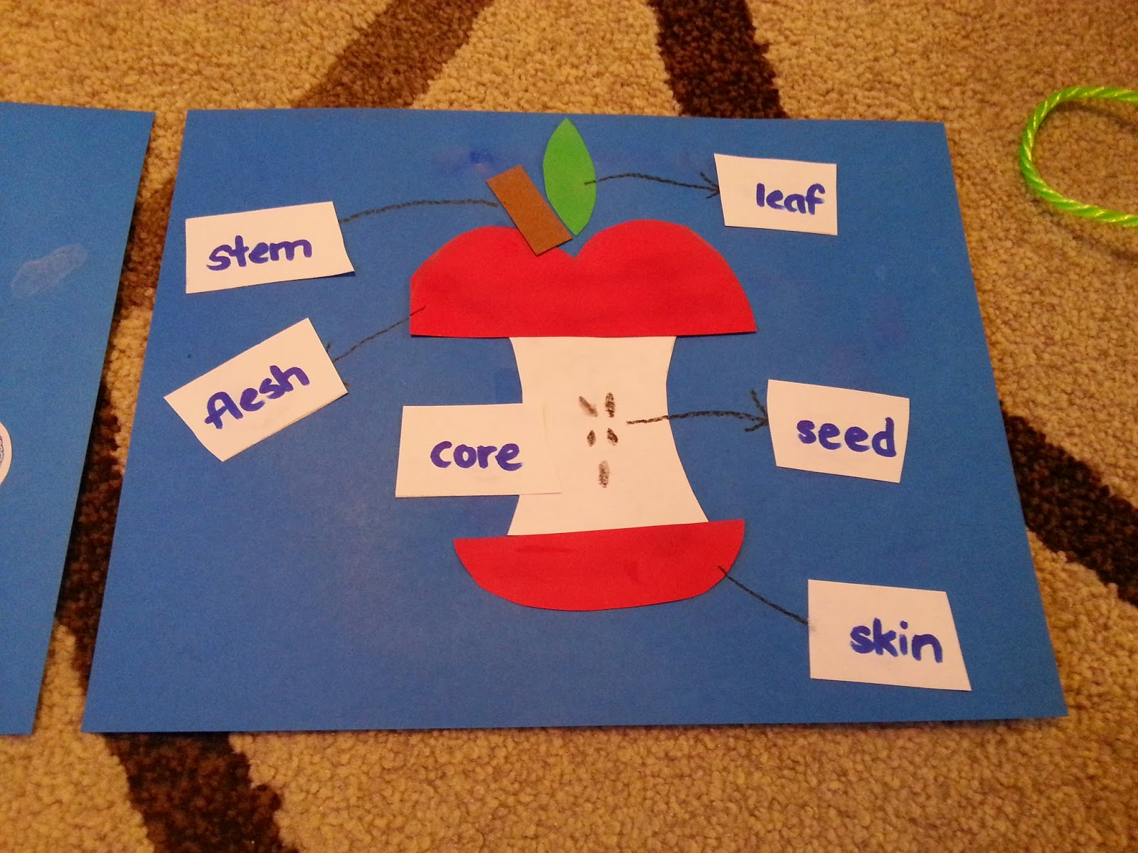 Our Family Homeschool Journey Alphabet Of The Week Letter A