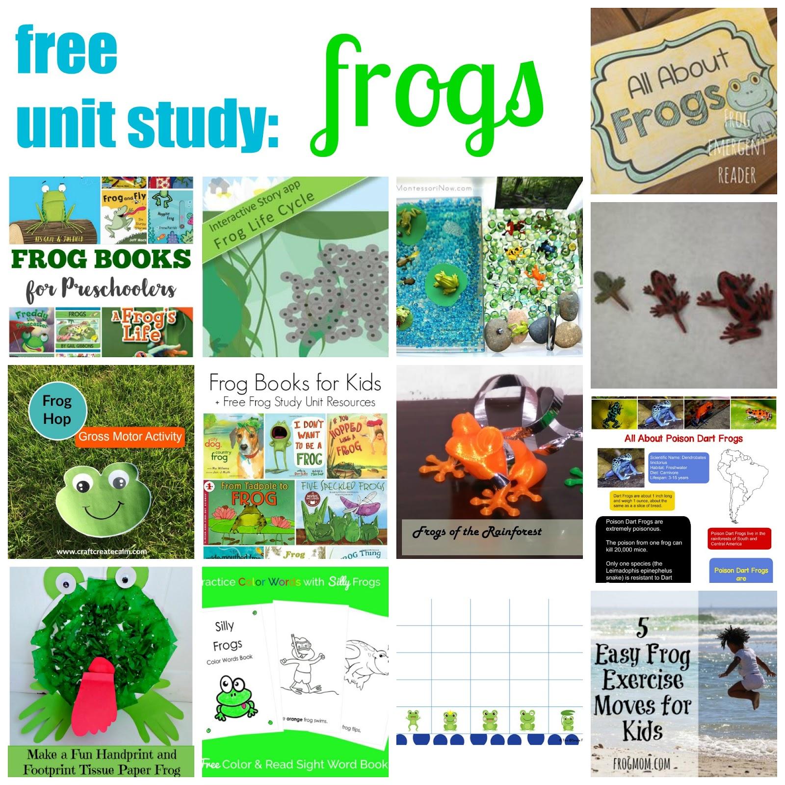 Frog Theme Color Words Book Free Printable