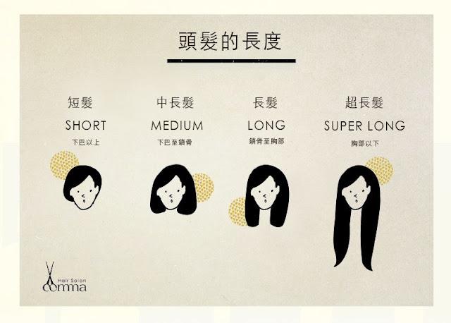 頭髮長度價位說明圖