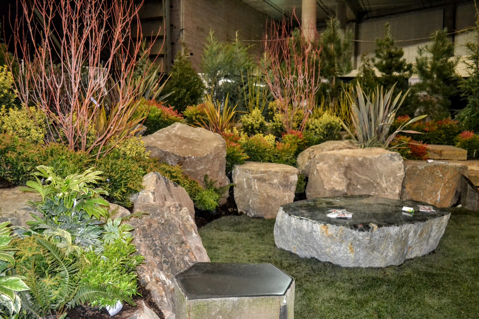 The Outlaw Gardener: The Tacoma Home and Garden Show Part 2 Some Plants