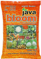 KNo3 Super Java Bloom