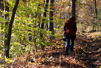 Walking in the Woods- 60 Black Friday Activities That Aren't Just Shopping