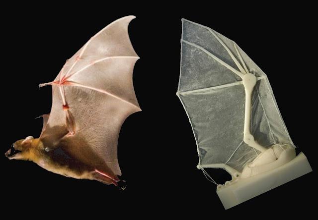 robot volador murciélago
