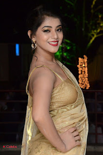 Actress Yamini Bhasker Pictures in Saree at anic Movie Audio Launch  0020.JPG