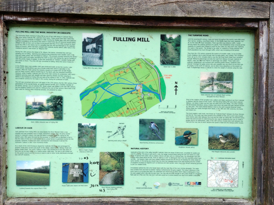 Photograph taken on Walk 61 the Danesbury Park Loop. Image by Hertfordshire Walker released under Creative Commons BY-NC-SA-4.0