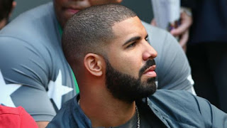 Drake Full Beard for Black Men