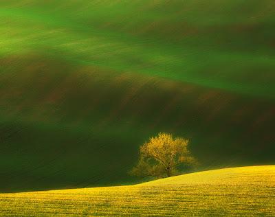 من أجمل الأماكن الطبيعية بالعالم :- منطقة مورافيا التشيكية 0_85364_1638dd89_ori