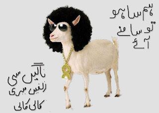 eid funny poetry