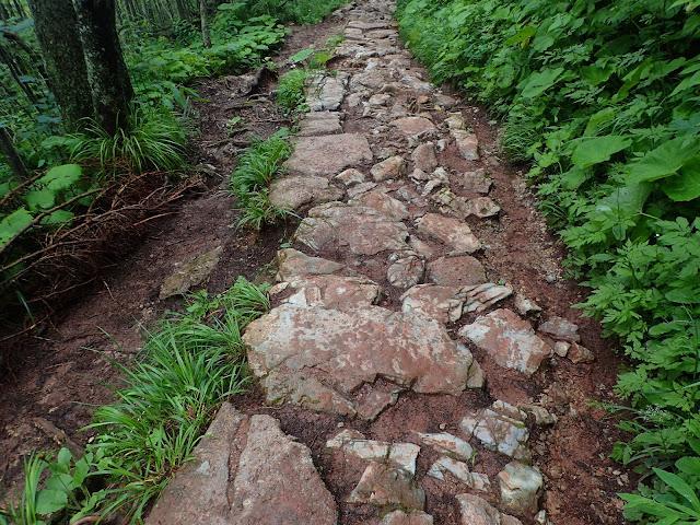 Błoto i kamienie na Ścieżce nad Reglami