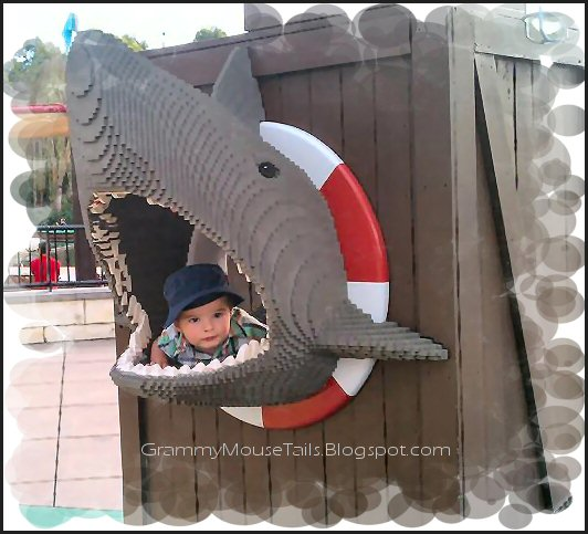 baby caught in shark jaws photo image