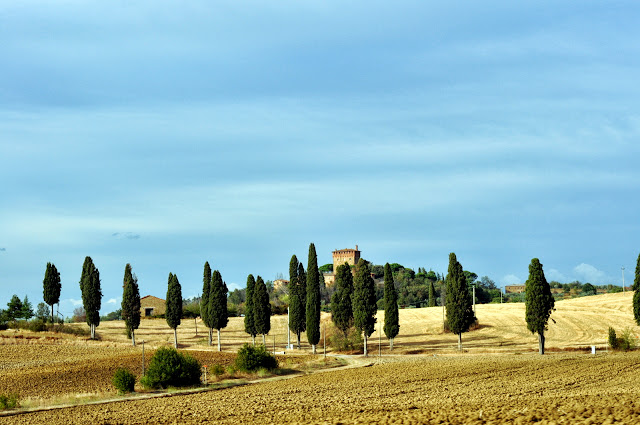 Tuscan Countryside | Taste As You Go