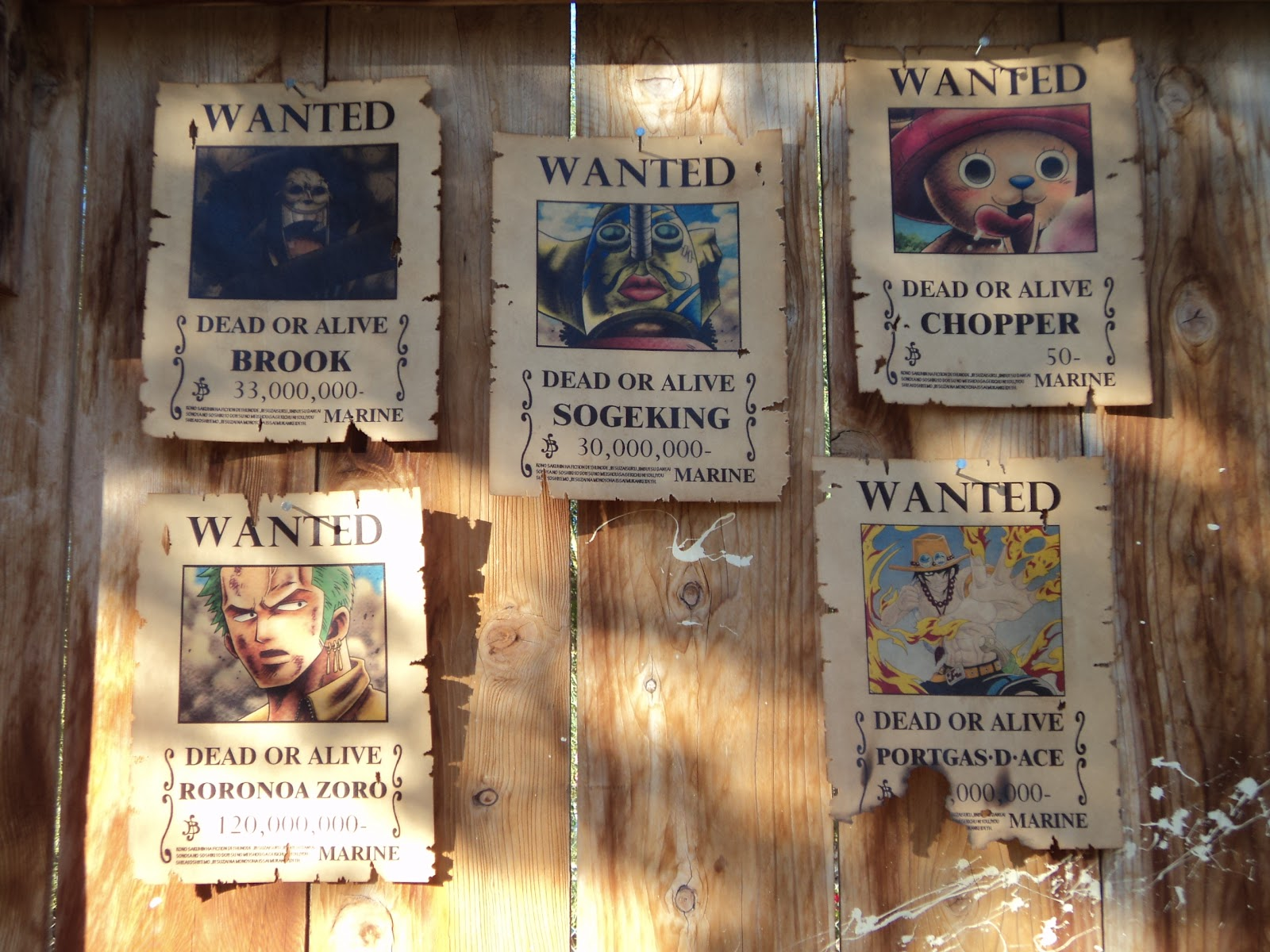 it s a little like magic wanted posters one piece