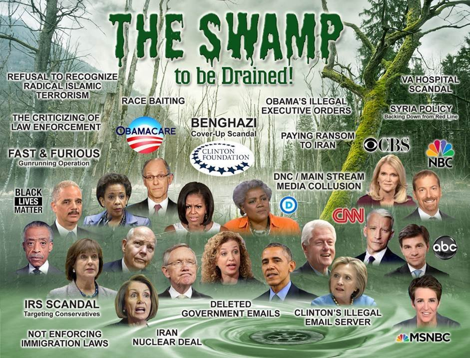 Image result for trump drain the swamp