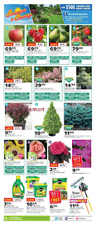Kent weekly flyer May 17 - 23, 2018
