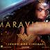 Universo Cinematográfico DC: As dificuldades até Mulher-Maravilha