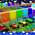Learn Colors for Children with Sports Cars Coloring in Color Balls Stadium Sliders