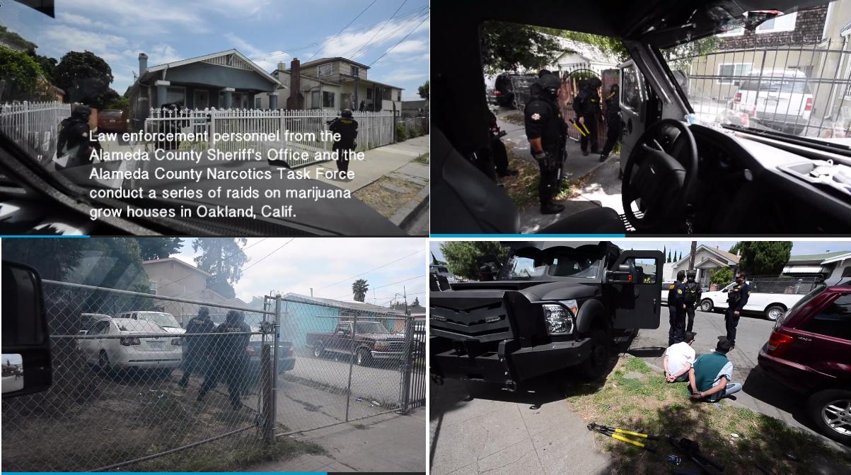 Borderland Beat: Oakland: 10 marijuana grow houses linked ...