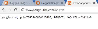 banpurba ads.txt custom