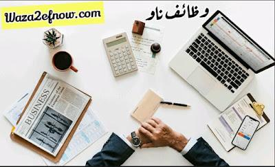 حملة وظائف شاغرة لخريجي التجارة في مصر | وظائف ناو