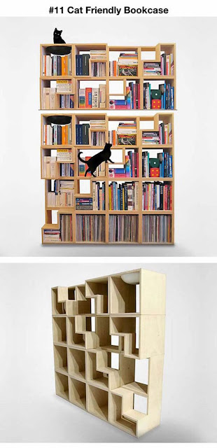 dono de gato também tem livraria