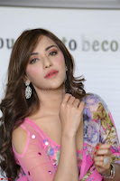 Actress Angela Krislinzki in Pink Saree Blouse Exclusive Pics March 2017 ~  030.JPG