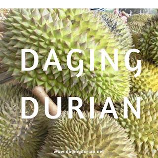distributor-daging-durian-medan-berkualitas-di-padang