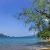 Indahnya Pantai Karanggongso Trenggalek Yang Tiada Duanya