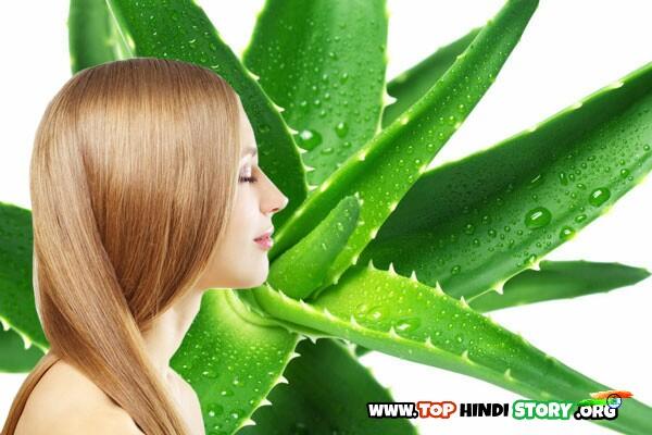 Aloe Vera benifit for hair