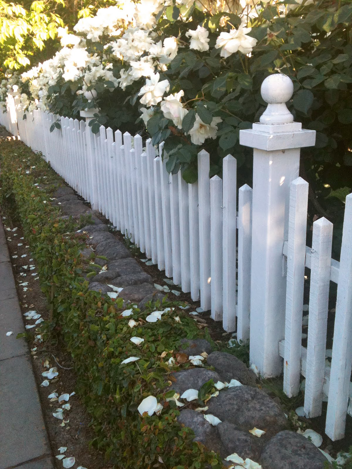 My Romantic Home: White Picket Fence Love
