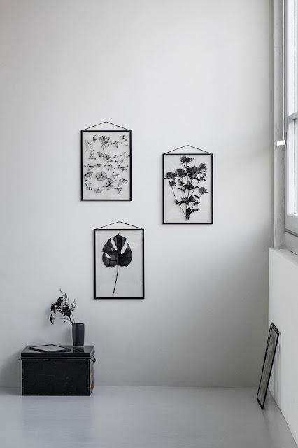 Cadres herbier design