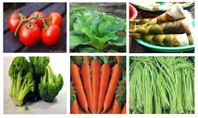 Tentang Sayuran Tumbuh
