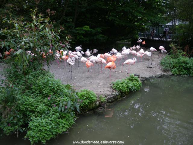 Tierpark Hellabrunn (Múnich)