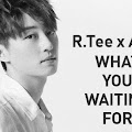 Lirik Lagu What You Waiting For - R.Tee x Anda dan Terjemahan