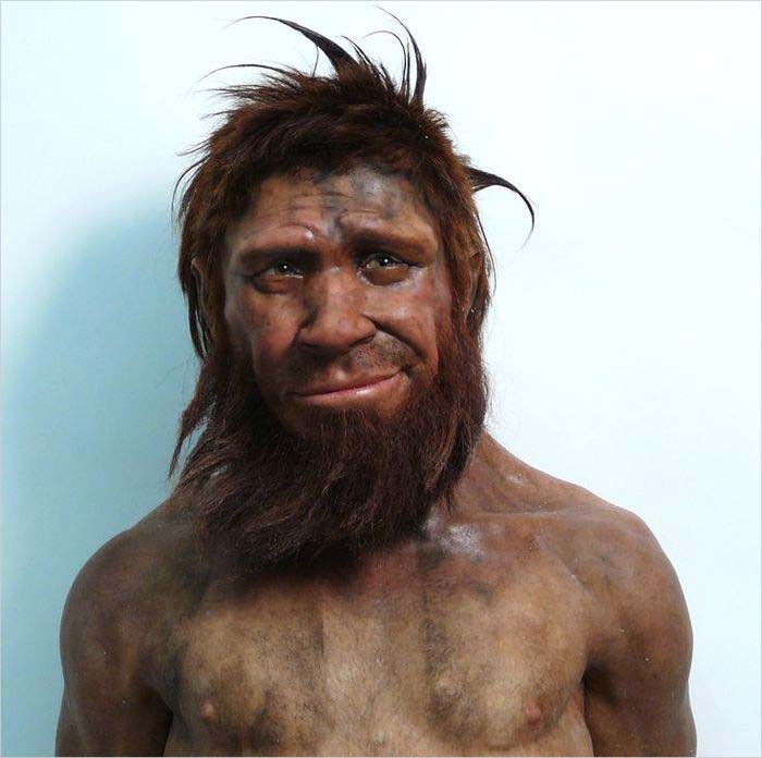 Неандертальцы люди или обезьяны