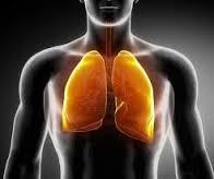 Αναπνοή από το στόμα: γιατί πρέπει να την αποφεύγετε;