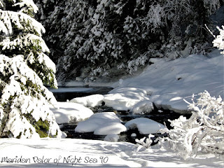 Photos of the new year; Snowy Idaho River