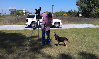 Veterans and Their Pets interview with Nicholas Moron of First Coast News, Daisy, Harold
